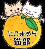 にこまめち猫部 | 伊豆高原「譲渡型の猫カフェ」